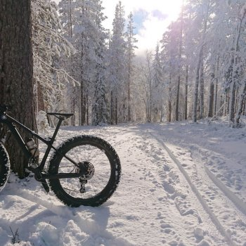 A fatbike is easy to ride in the winter as well.